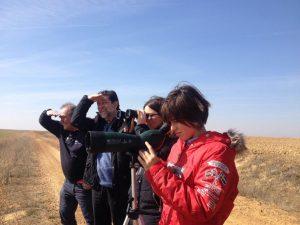 turismo de aves en villasexmir